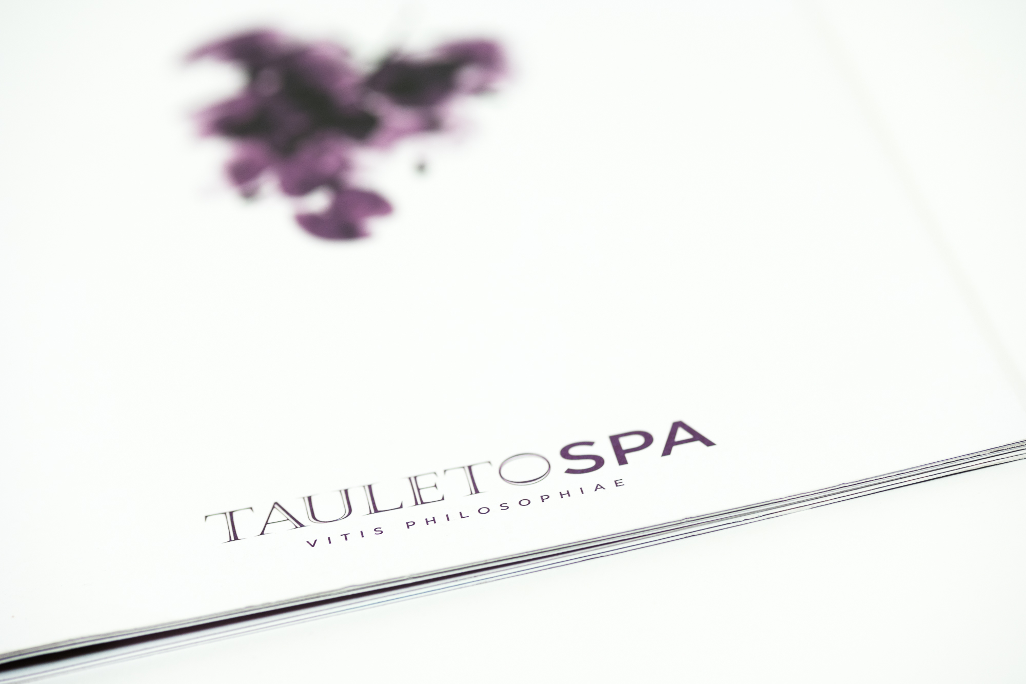Tauleto-2